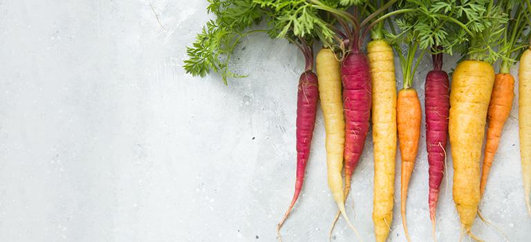 Möhre, Karotte, Gelbe Rübe oder Wurzel – Na was denn jetzt?